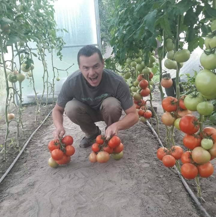 «В Італії я навчився, що клієнт – це друг»: лучанин розповів, як втілює мрію бути фермером на Волині