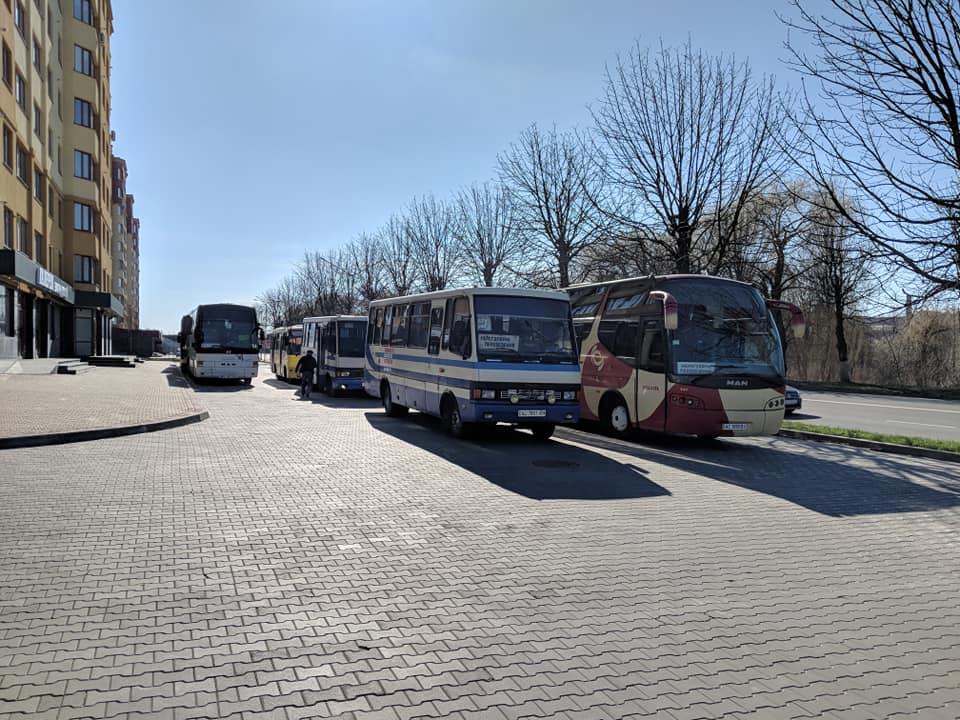 У Луцьк автобусами звозили прихильників Юлії Тимошенко. ВІДЕО