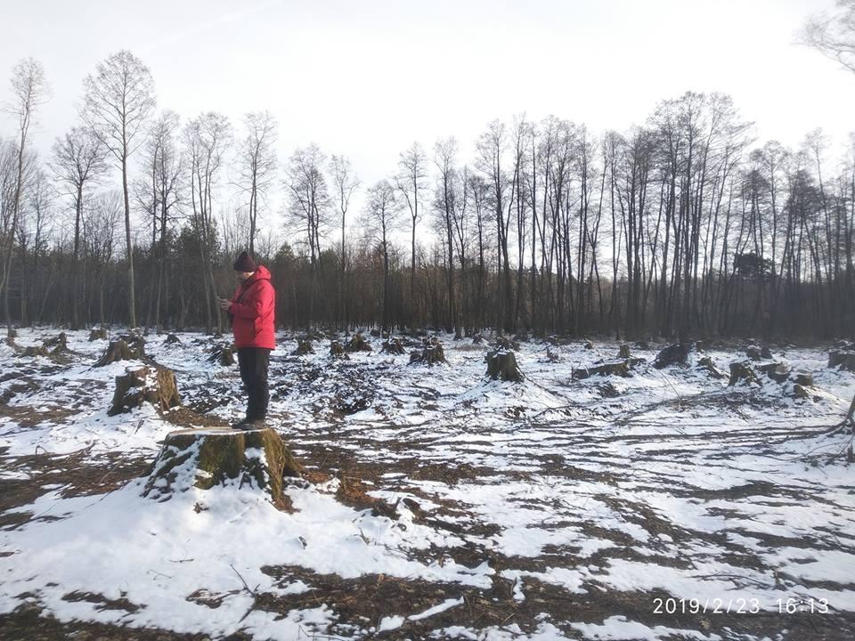Активісти назвали імена тих, хто знищує заповідні зони Волині