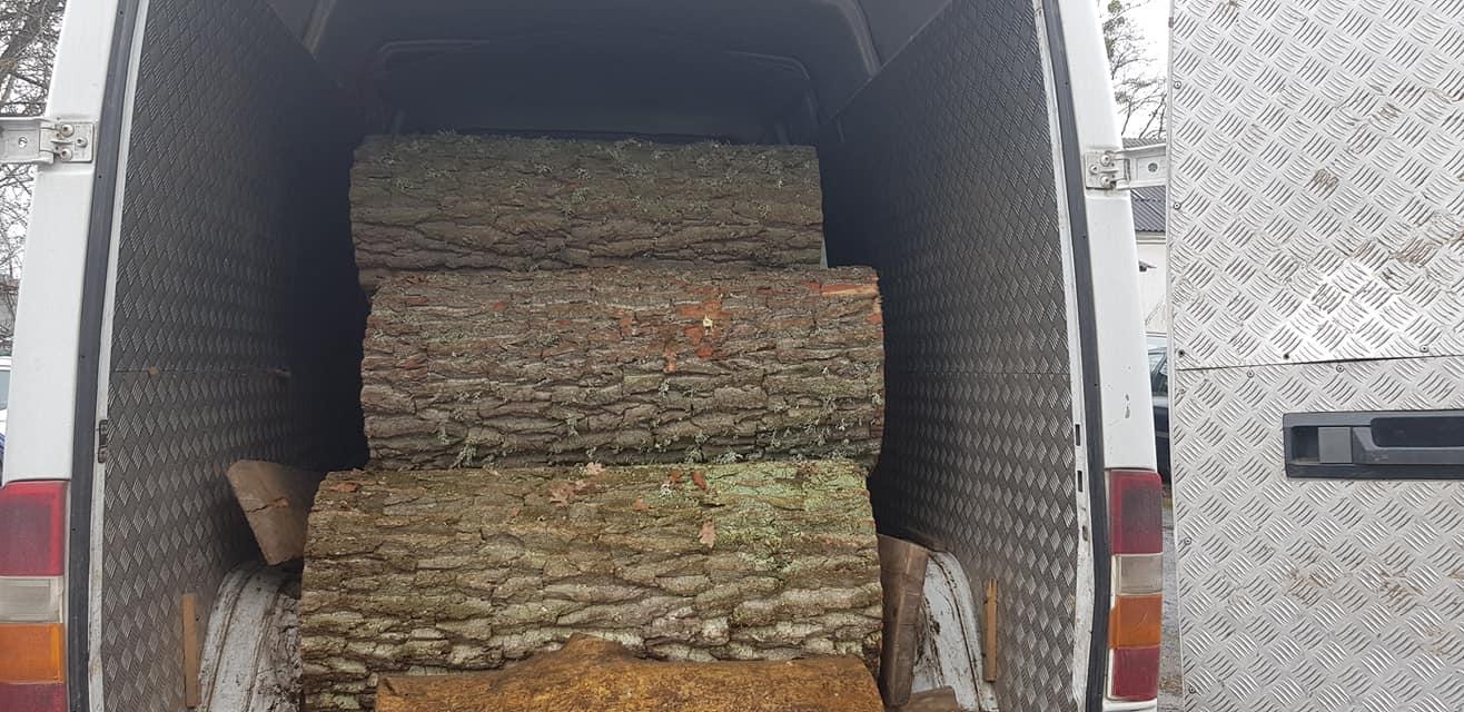 На Волині незаконно намагалися вивезти дубові колоди. ФОТО