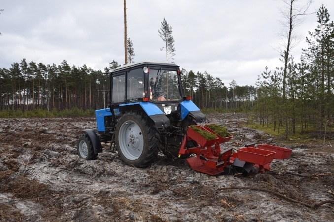 На Маневиччині пробують механізувати процес посадки лісових культур. ФОТО