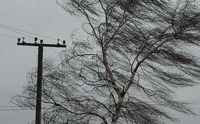 Волинян попереджають про сильний вітер
