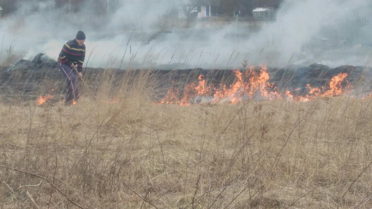 На Волині виявили чоловіка, який спалював суху траву. ФОТО