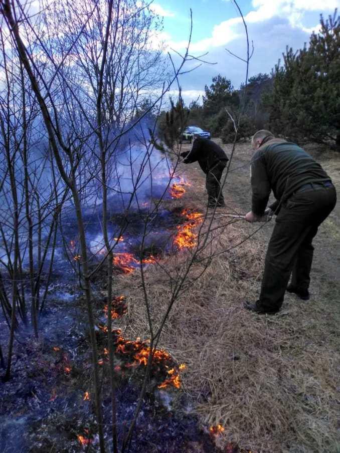 У Ківерцівському районі рятували ліс від вогню. ФОТО