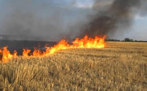 Поблизу Луцька горіла суха трава