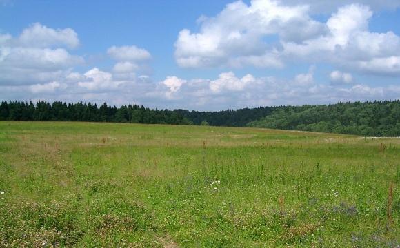 Громаді на Волині повернуть шість гектарів землі