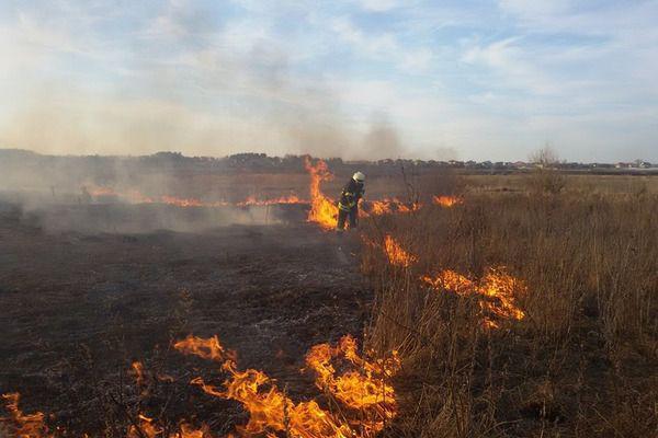 На Волині ліквідували понад 40 пожеж сухої трави та загорання на торфовищі
