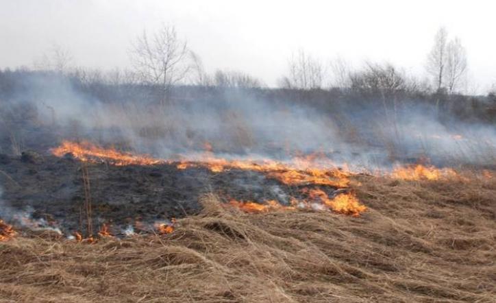 На Волині ліквідували сімзагорань сухої трави