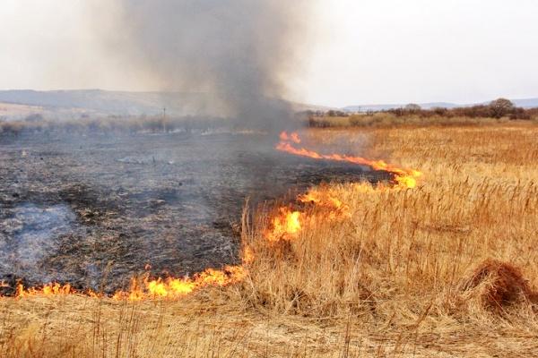 Волинські рятувальники ліквідували вісім загорань сухої трави
