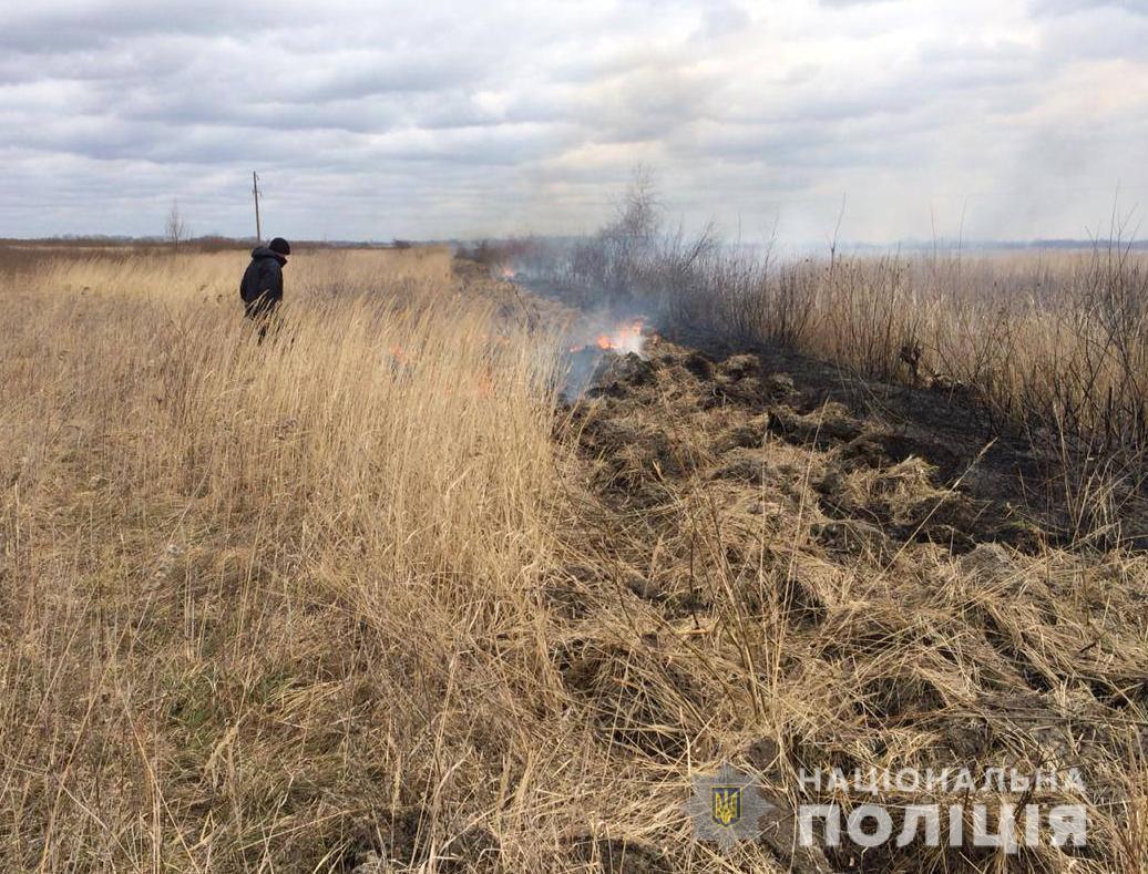 Волинянин заплатить штраф за спалювання сухої трави. ФОТО