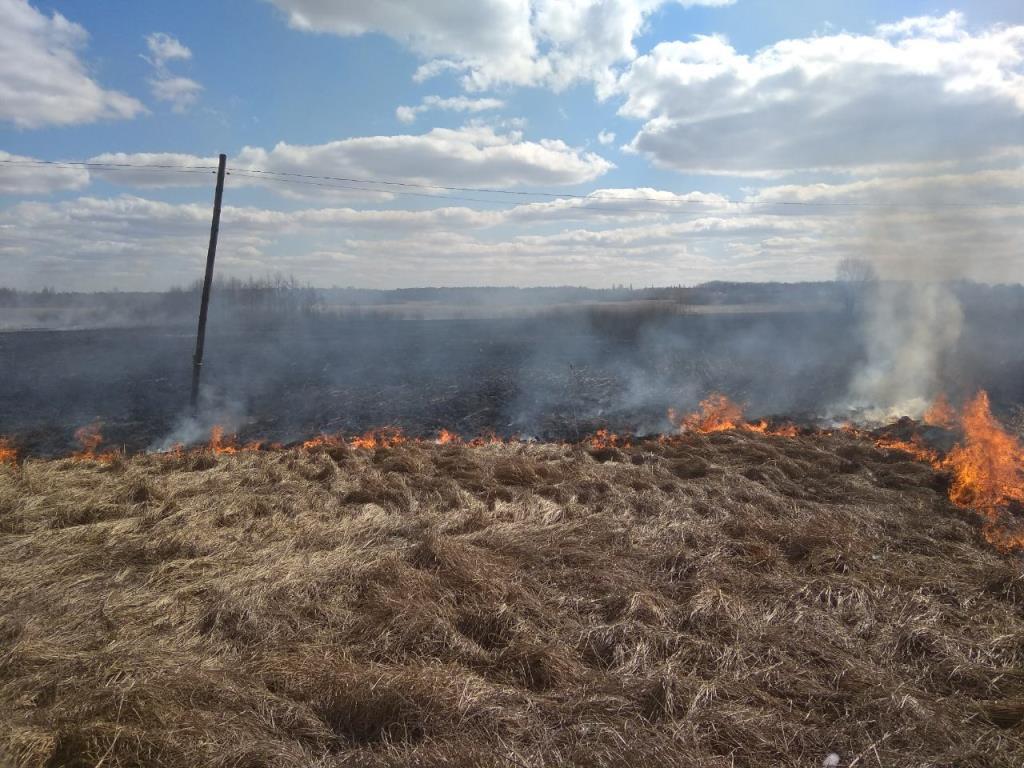 За минулу добу на Волині ліквідували вісім загорань сухої трави