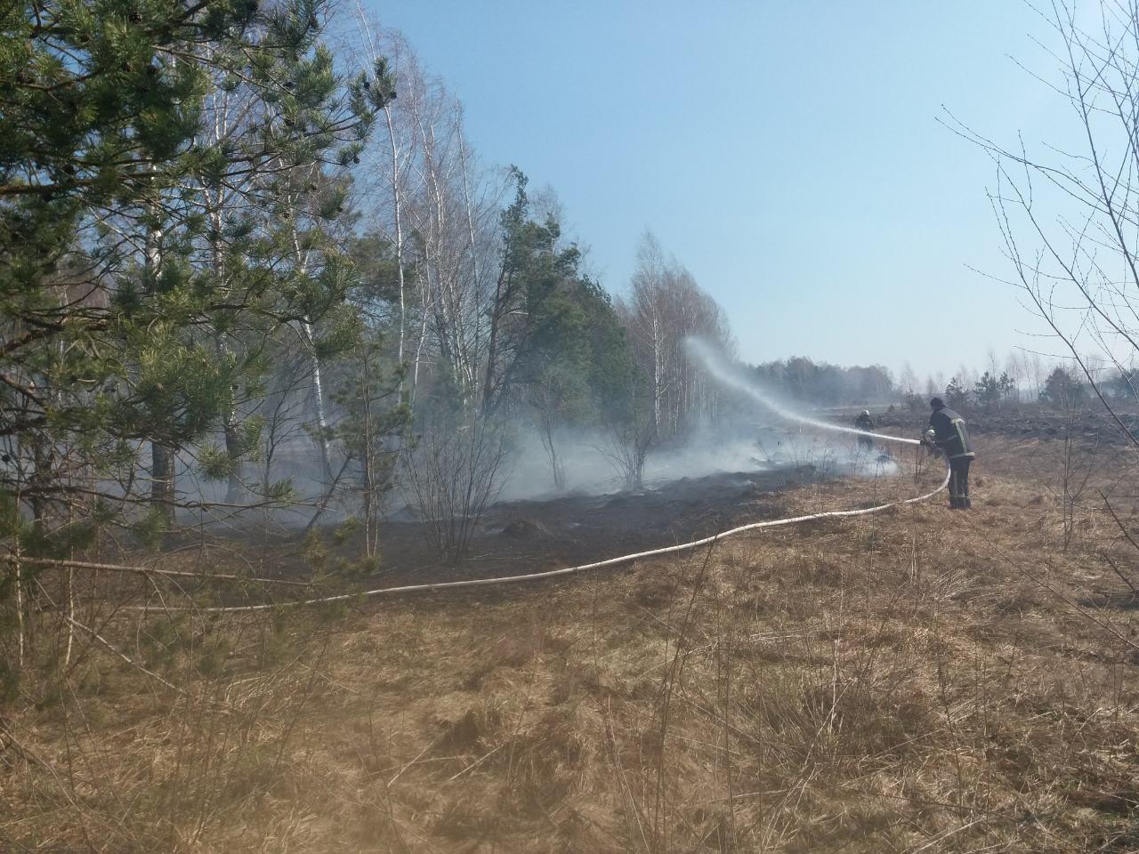 На Волині рятувальники ліквідували 19 займань сухої трави