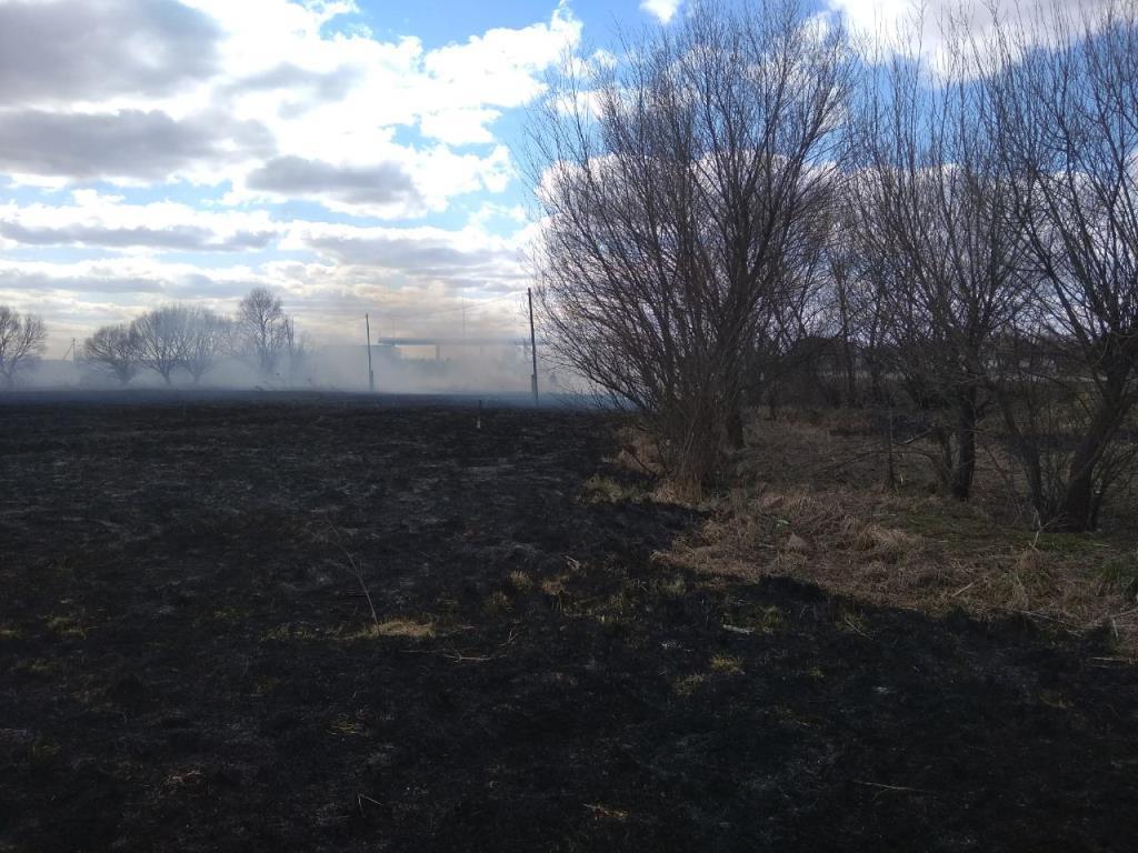 За добу на Волині трапилось вісім пожеж в екосистемах