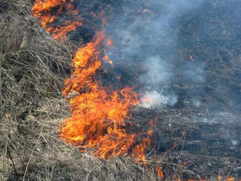 На Волині через необережність гасили пожежу сухої трави