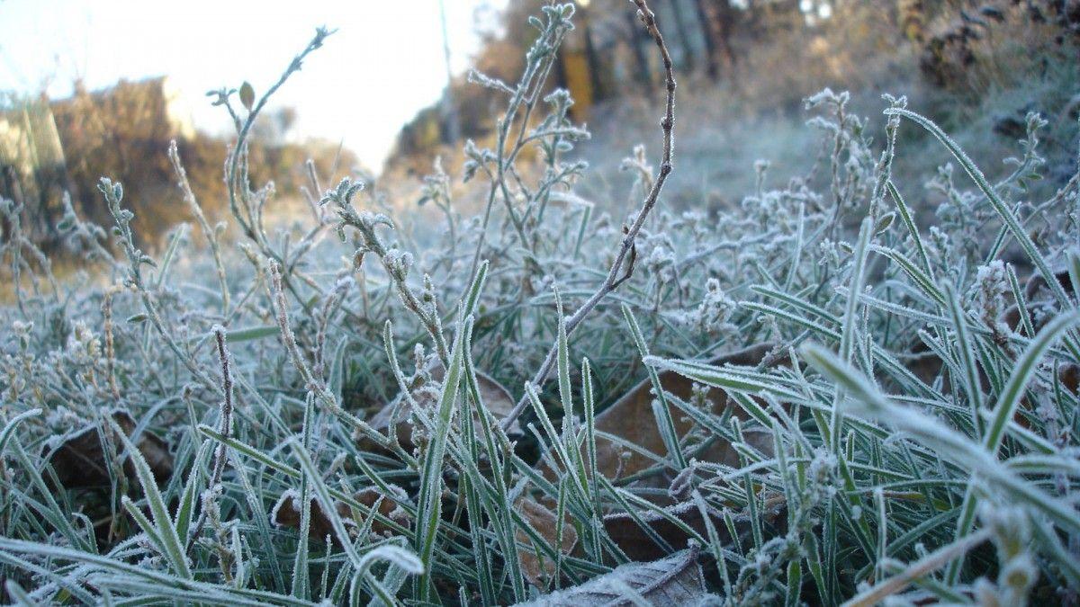 У Волинській області очікуються «небезпечного» рівня заморозки