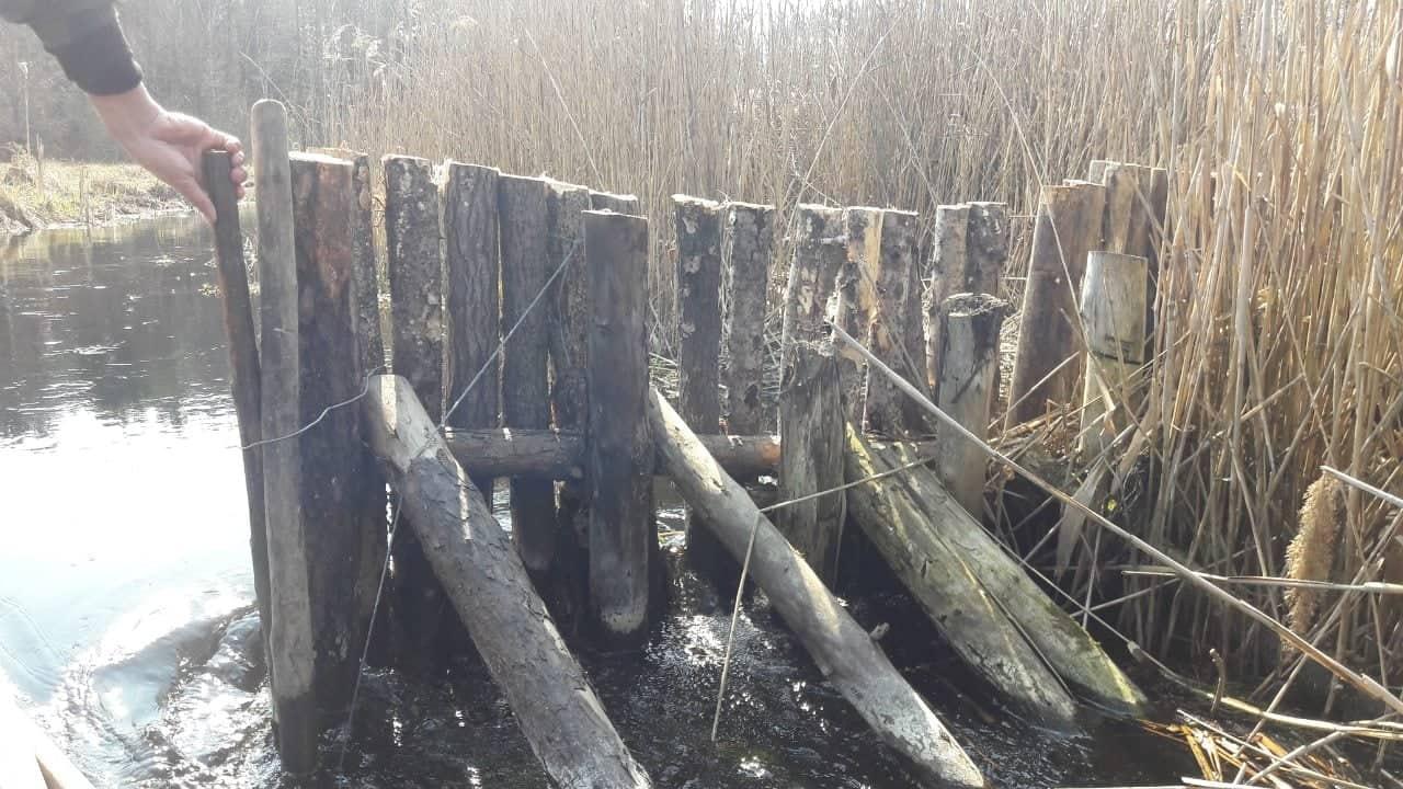 Поблизу річки на Волині виявили браконьєрську загату. ФОТО