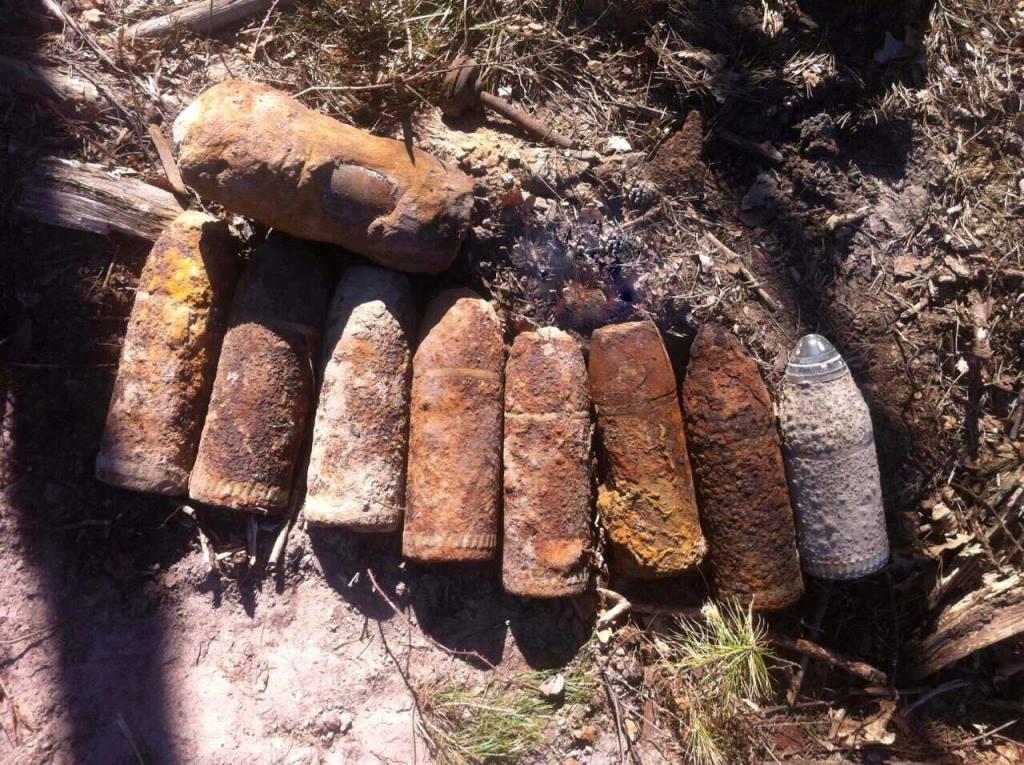 На Волині лісівник знайшов артилерійські снаряди