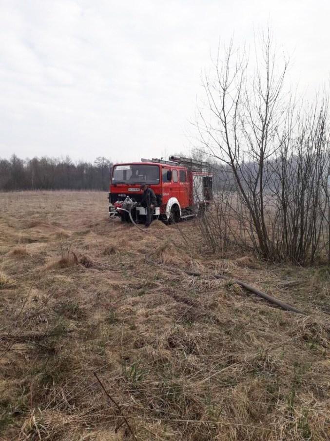 На Волині ліквідували більше десятка пожеж поблизу лісів