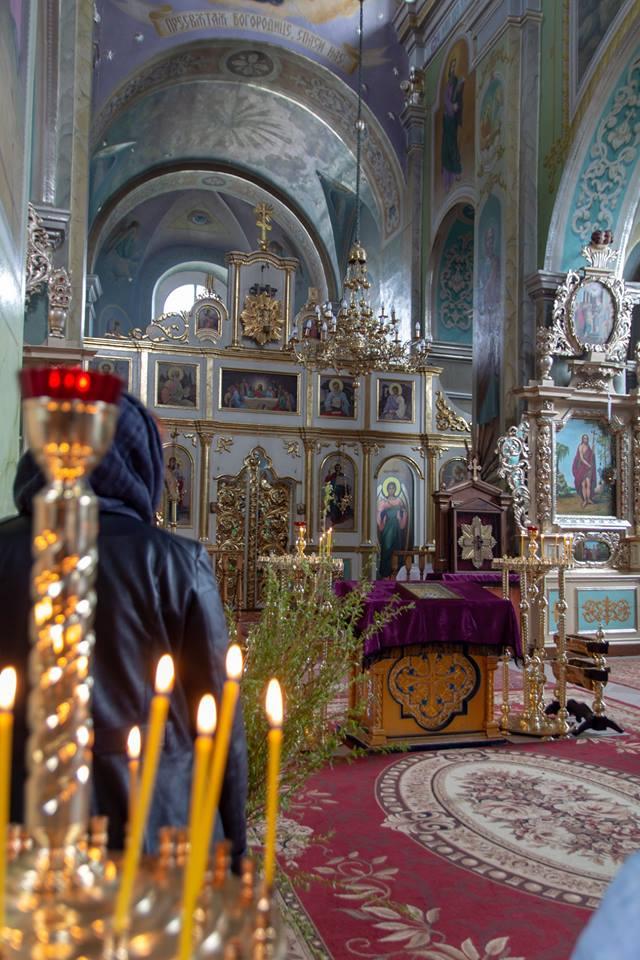 Показали, як святили вербу у соборі поблизу Луцька. ФОТО