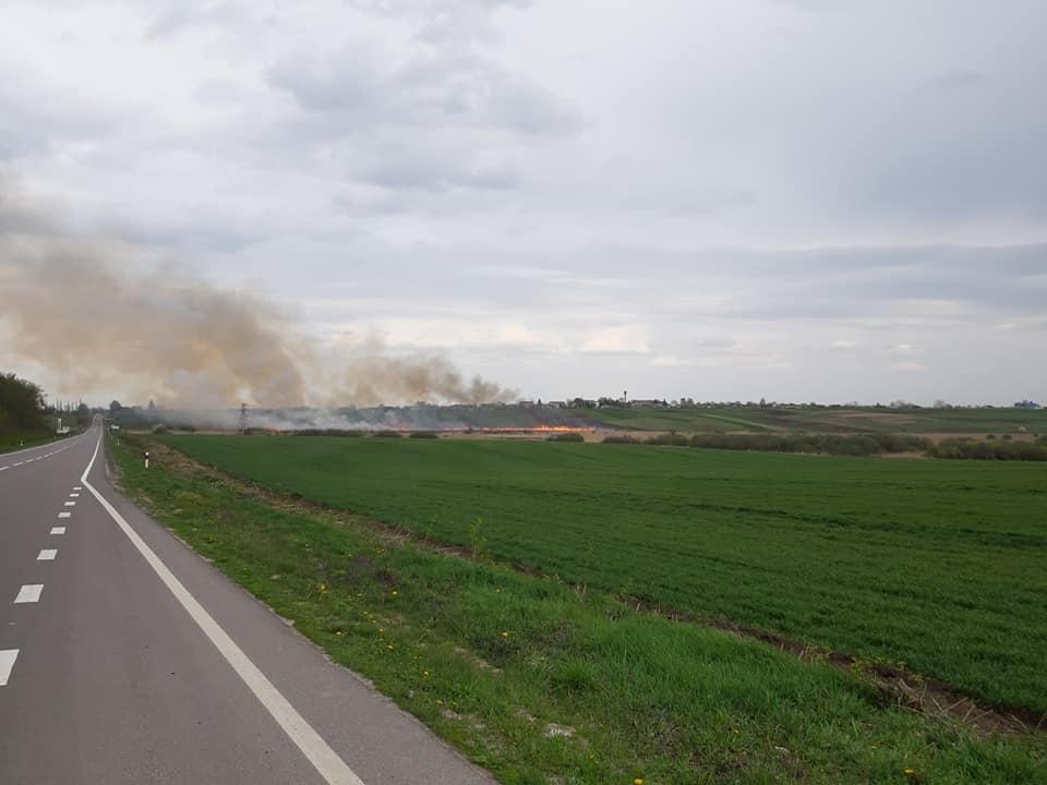 Неподалік Луцька горить долина. ФОТО