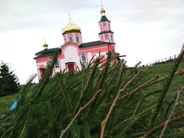У селі на Волині діти з лісівниками озеленювали церковне подвір'я. ФОТО