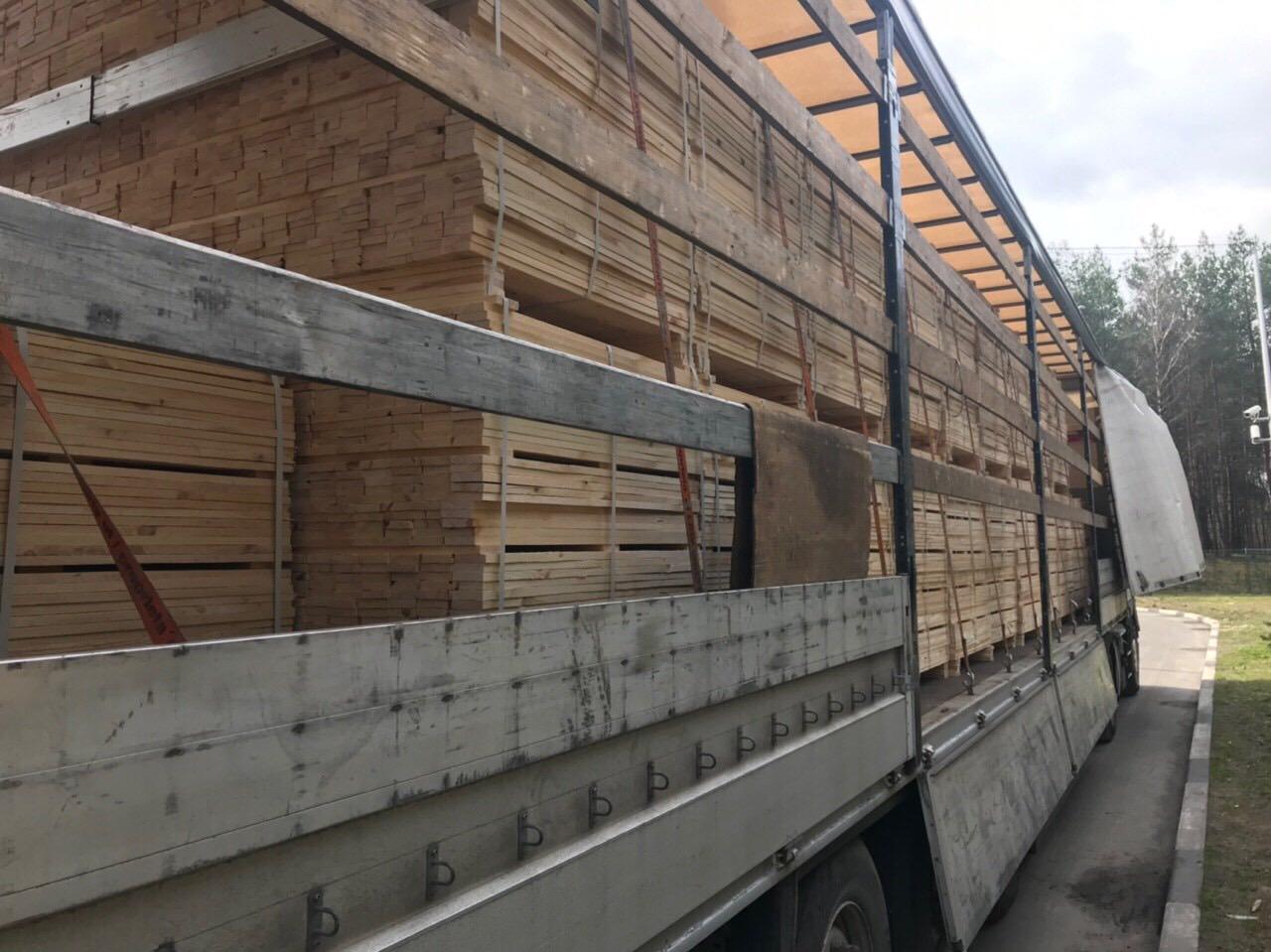 До Нідерландів хотіли незаконно експортувати майже 40 кубометрів поліського лісу