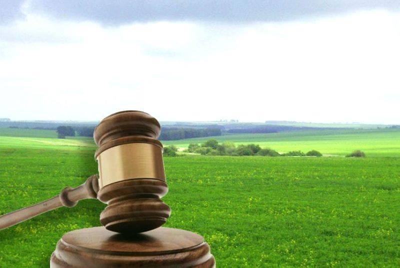Волинська громада упішно продала із торгів земельну ділянку