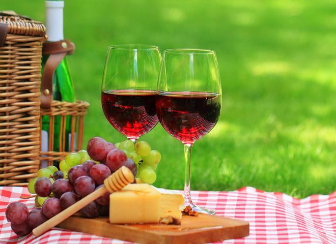 Супрун дала поради на пікнік: як пити алкоголь, яку брати їжу та пам'ятати про кліщів