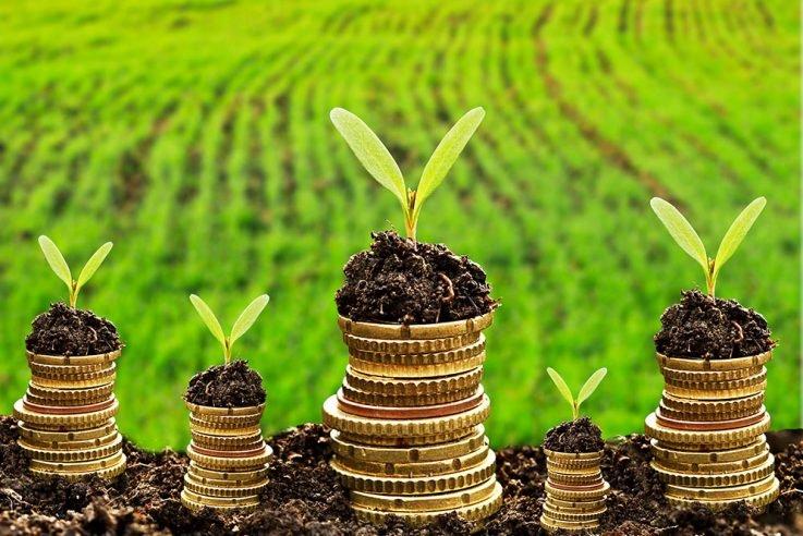 Громади Волині отримали на третину більше плати за землю