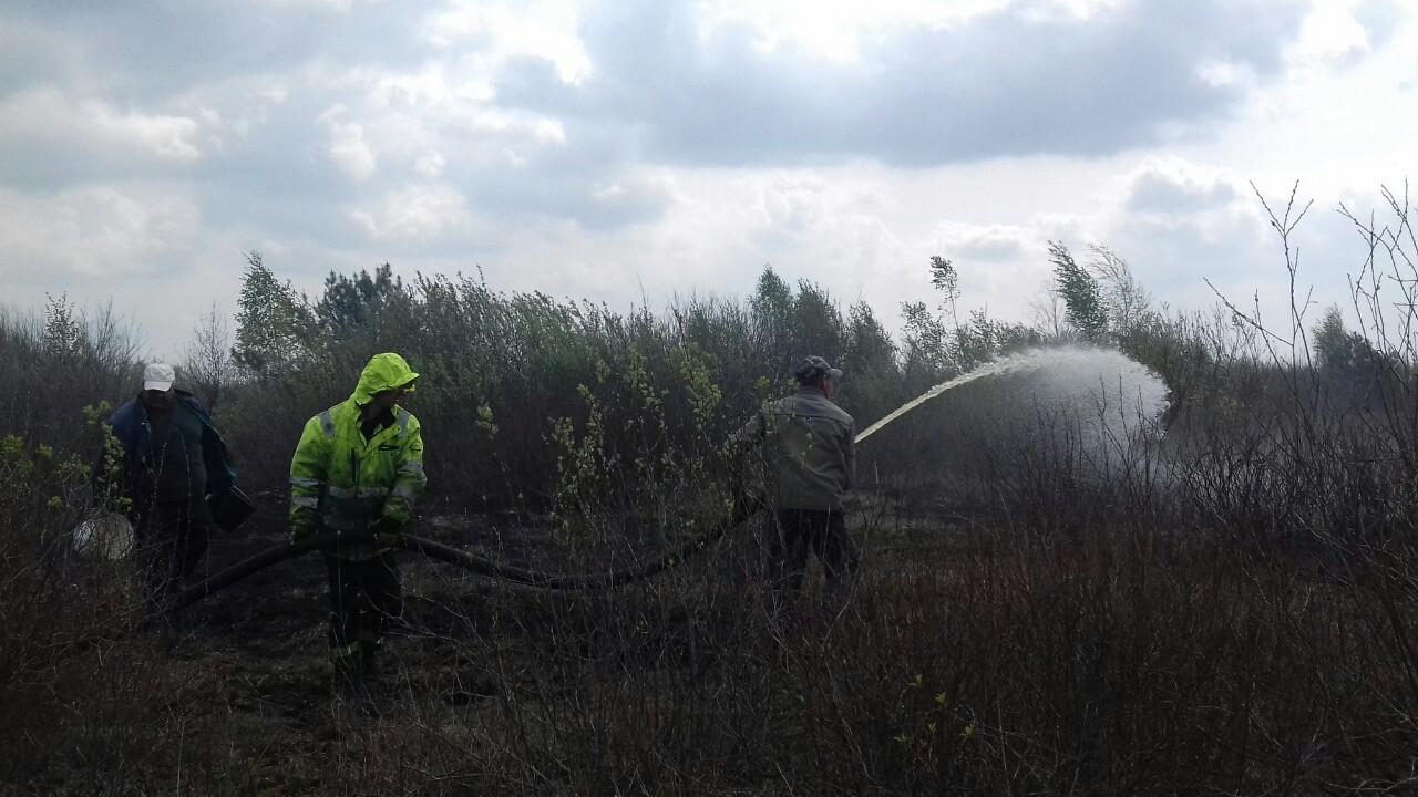 На Волині продовжують гасити пожежу на торфовищі поблизу села