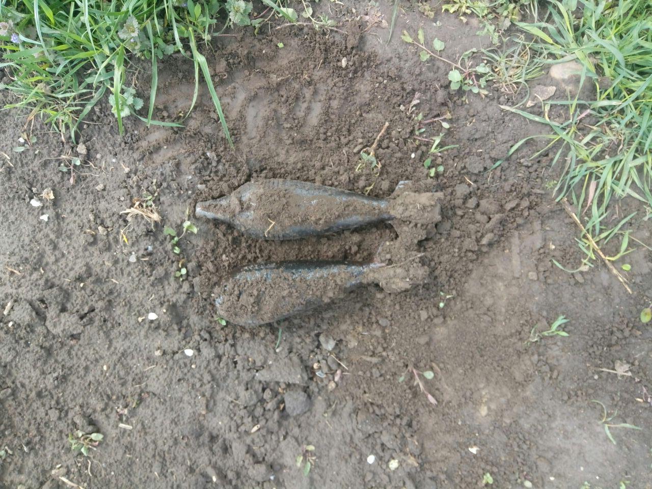 У лісі на Волині виявили небезпечну міну