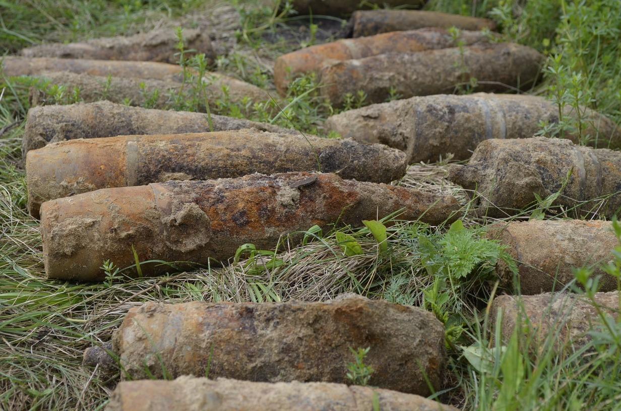 У волинському селі піротехніки знешкодили понад 251 боєприпас часів минулої війни. ФОТО. ВІДЕО