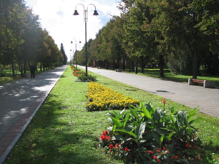У парку Луцька хочуть демонтувати незаконно встановлені конструкції