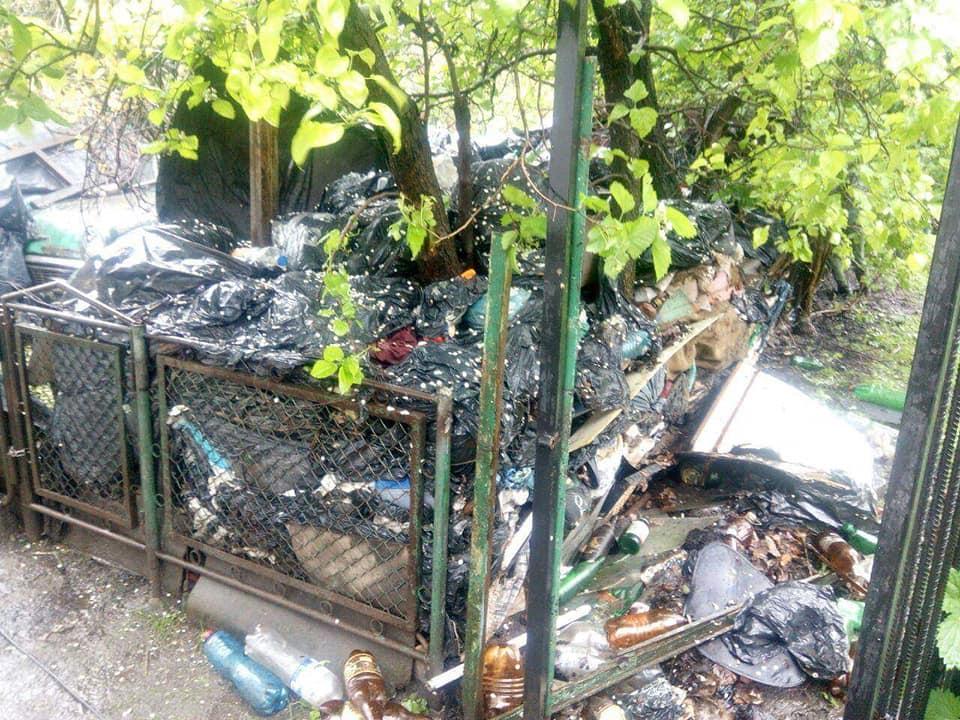 Лучанка розвела антисанітарію поблизу будинку. ФОТО