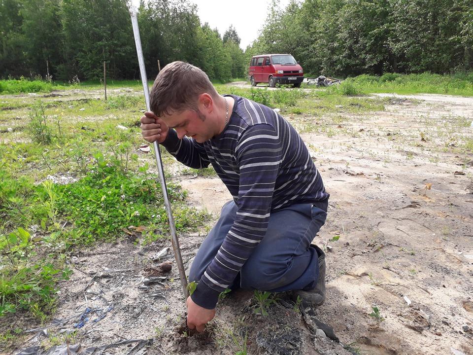 У Дубівській громаді висадили 250 дубочків. ФОТО
