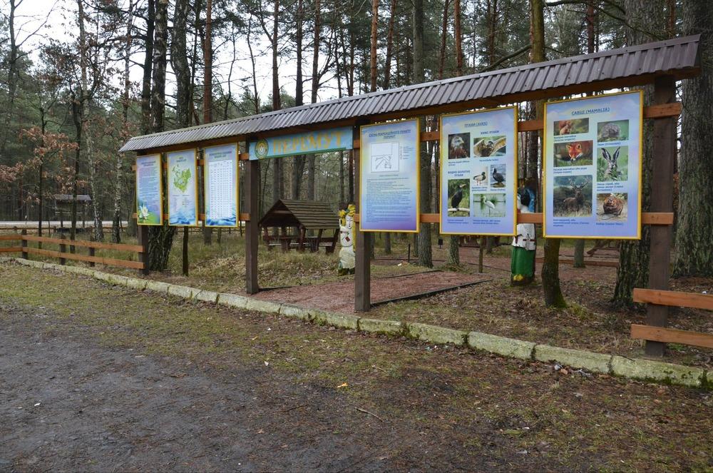 Волинські лісівники створюють нові рекреаційні пункти відпочинку. ФОТО