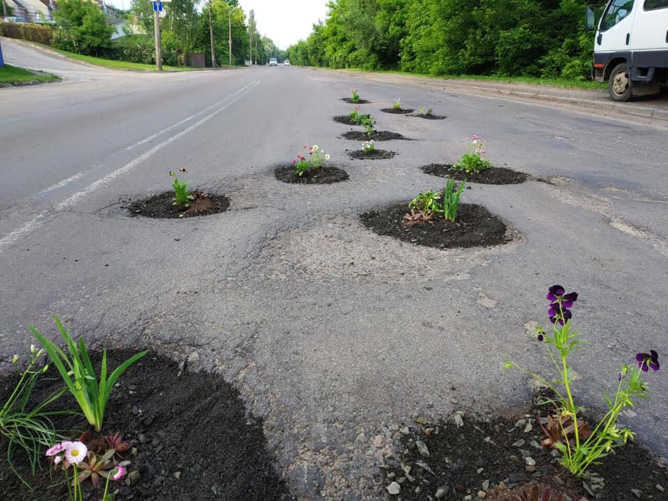 Стало відомо, хто «залатав» квітами ями на дорогах Луцька. ФОТО