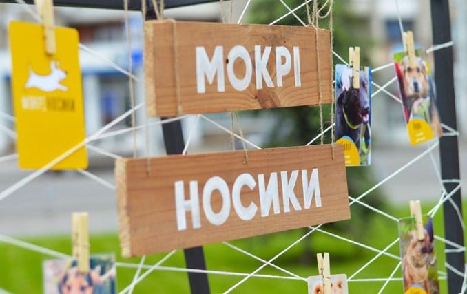 Мистецтво маленьких кроків: у Луцьку відбувся фестиваль «Подаруй собаці дім». ФОТО