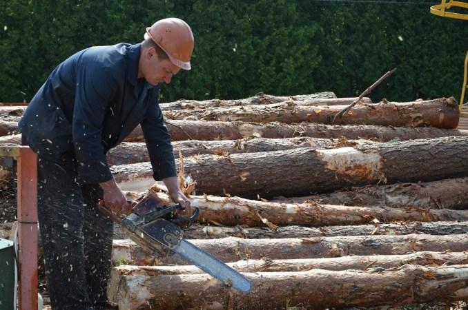 Волинські лісівники навчилися ефективно переробляти незатребувану деревину. ФОТО