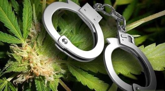 У молодика на Волині виявили марихуану