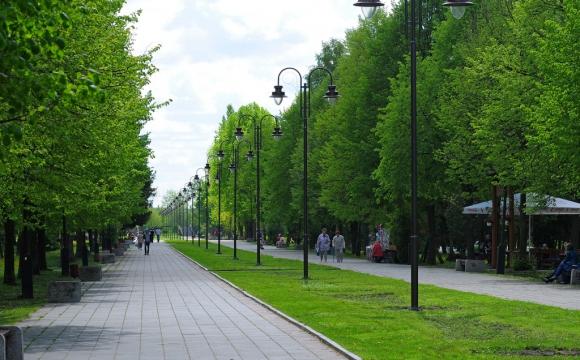 У центральному парку Луцька впорядкують рух транспорту