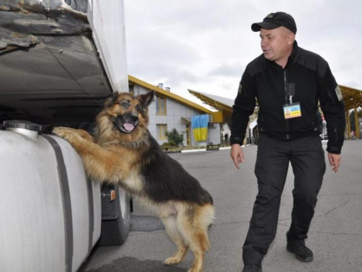 На «Ягодині» службовий пес винюхав наркотики