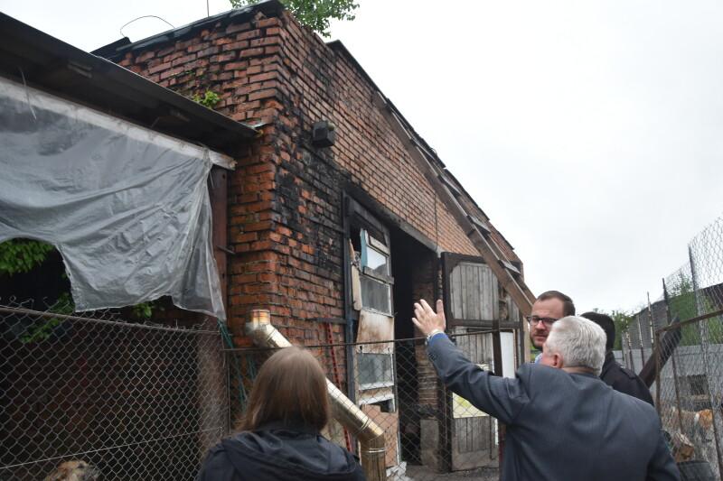 У Луцьку відремонтують дах комунальному підприємству, яке опікується безпритульними тваринами