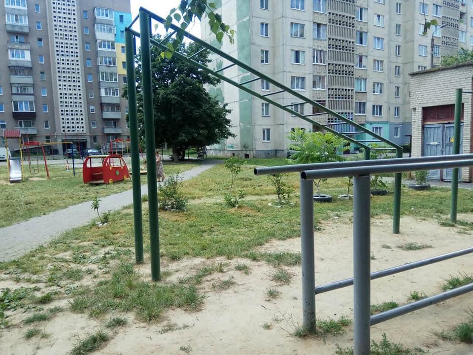 Мешканці Луцька самостійно позбавилися «дворових джунглів». ФОТО