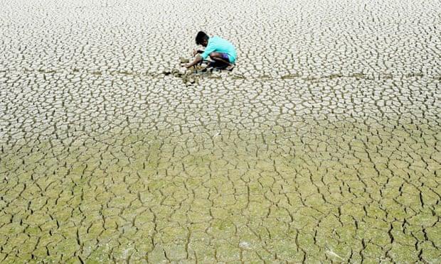 Людству загрожують наслідки глобального потепління, які підірвуть право на життя та їжу