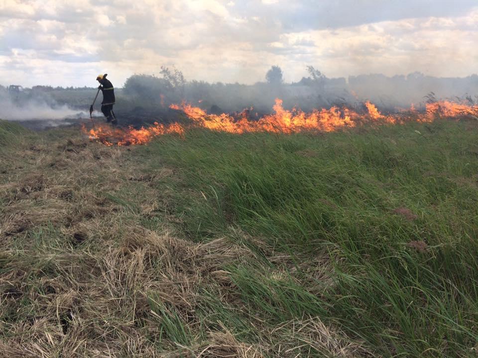 На Волині вигоріли три гектари поля через запалене сміття