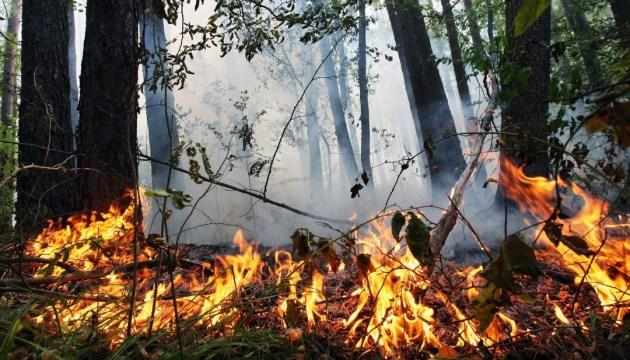 На Волині оголосили надзвичайну пожежну небезпеку