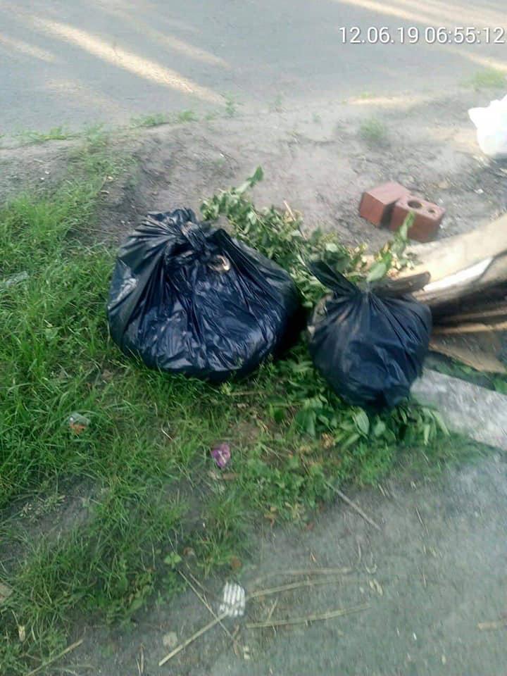 У Луцьку викидають сміття на дорогу