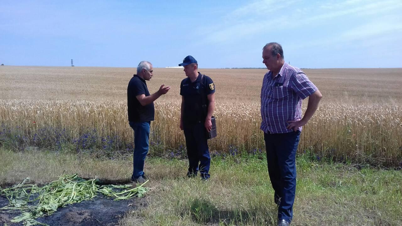 На Волині ледь не згоріло 87 гектарів зернових посівів