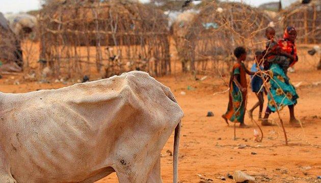Кожна дев'ята людина у світі страждає від голоду